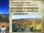 regional strengths environmental cultural assets