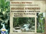 regional strengths environmental cultural assets1