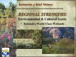 regional strengths environmental cultural assets2