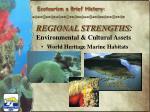 regional strengths environmental cultural assets3