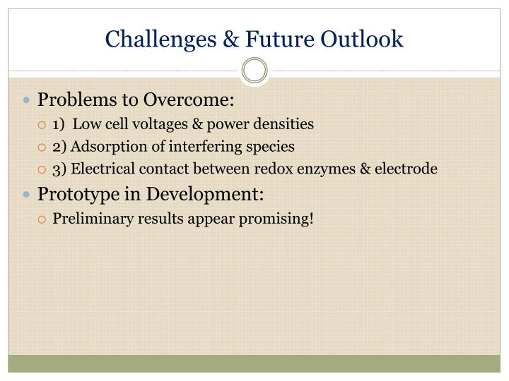 Challenges & Future Outlook