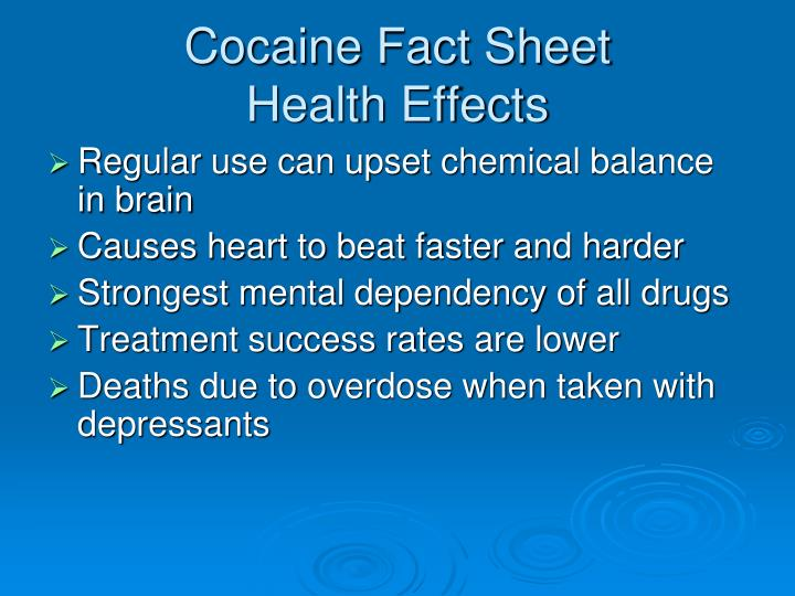 Cocaine Fact Sheet