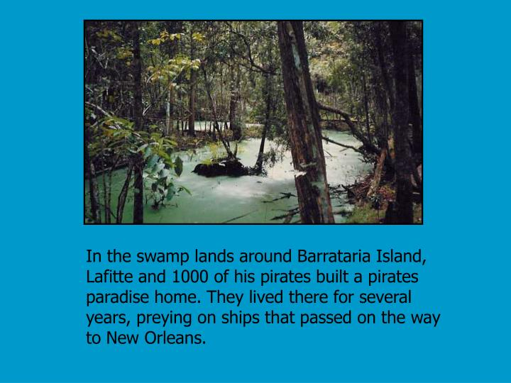 In the swamp lands around Barrataria Island, Lafitte and 1000 of his pirates built a pirates paradise home. They lived there for several years, preying on ships that passed on the way to New Orleans.