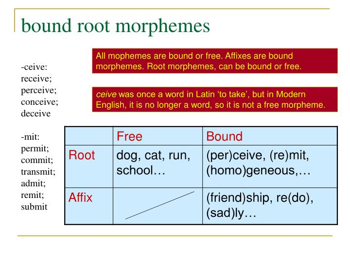 bound root morphemes