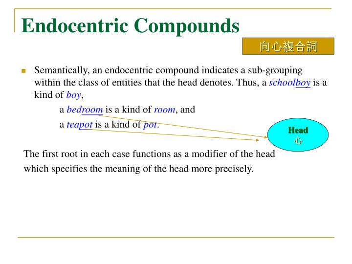 Endocentric Compounds
