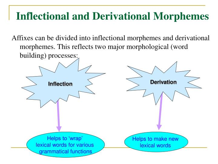 Inflectional and Derivational Morphemes