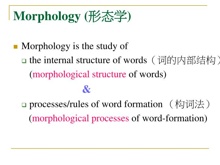 Morphology (