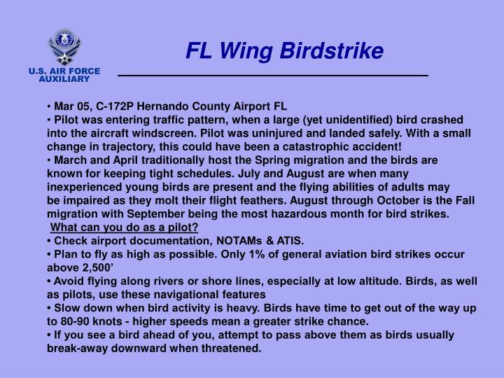 FL Wing Birdstrike