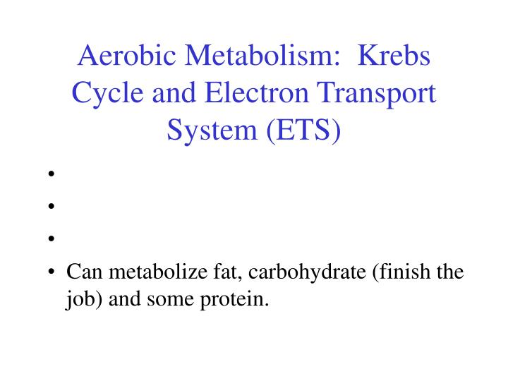 Aerobic Metabolism:  Krebs Cycle and Electron Transport System (ETS)