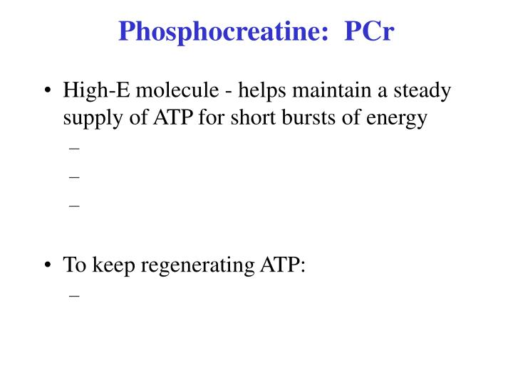 Phosphocreatine:  PCr
