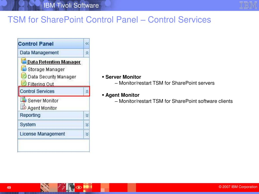 TSM for SharePoint Control Panel – Control Services