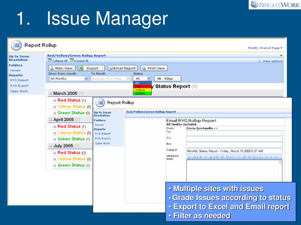 1.   Issue Manager
