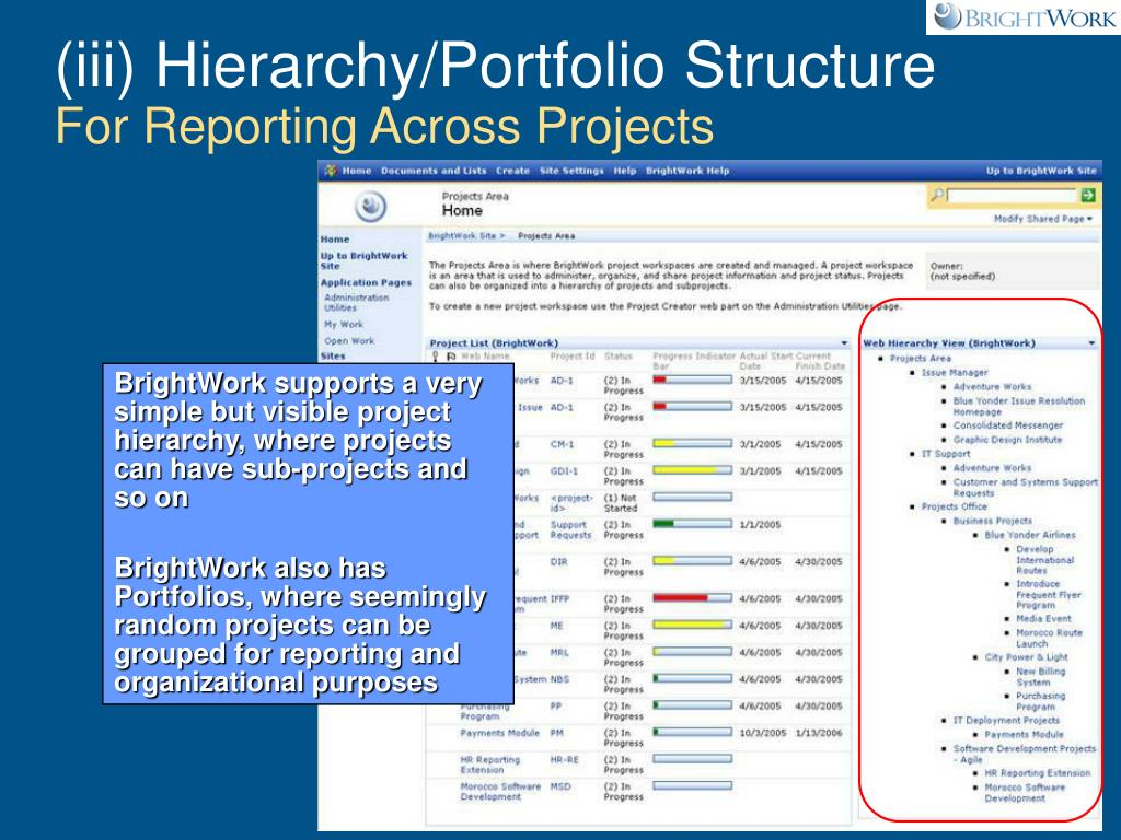 (iii) Hierarchy/Portfolio Structure