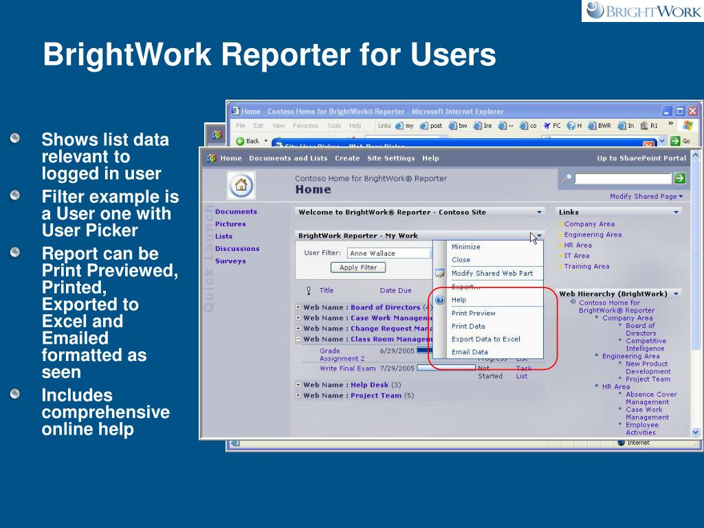 BrightWork Reporter for Users