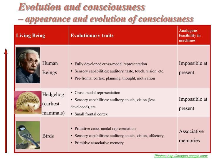Evolution and consciousness