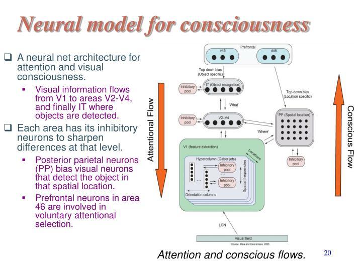 Neural model for consciousness