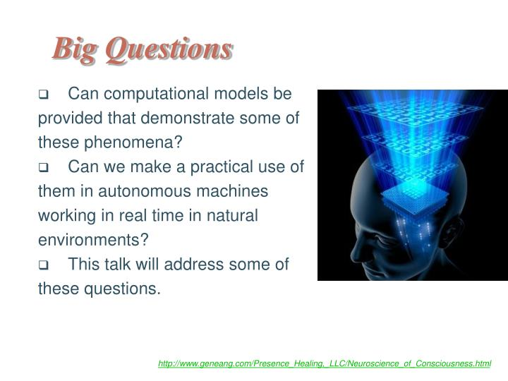 Can computational models be provided that demonstrate some of these phenomena?