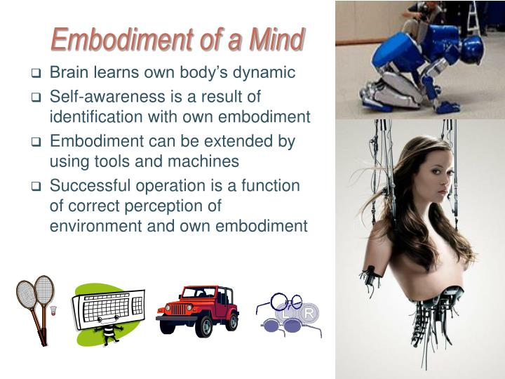 Embodiment of a Mind