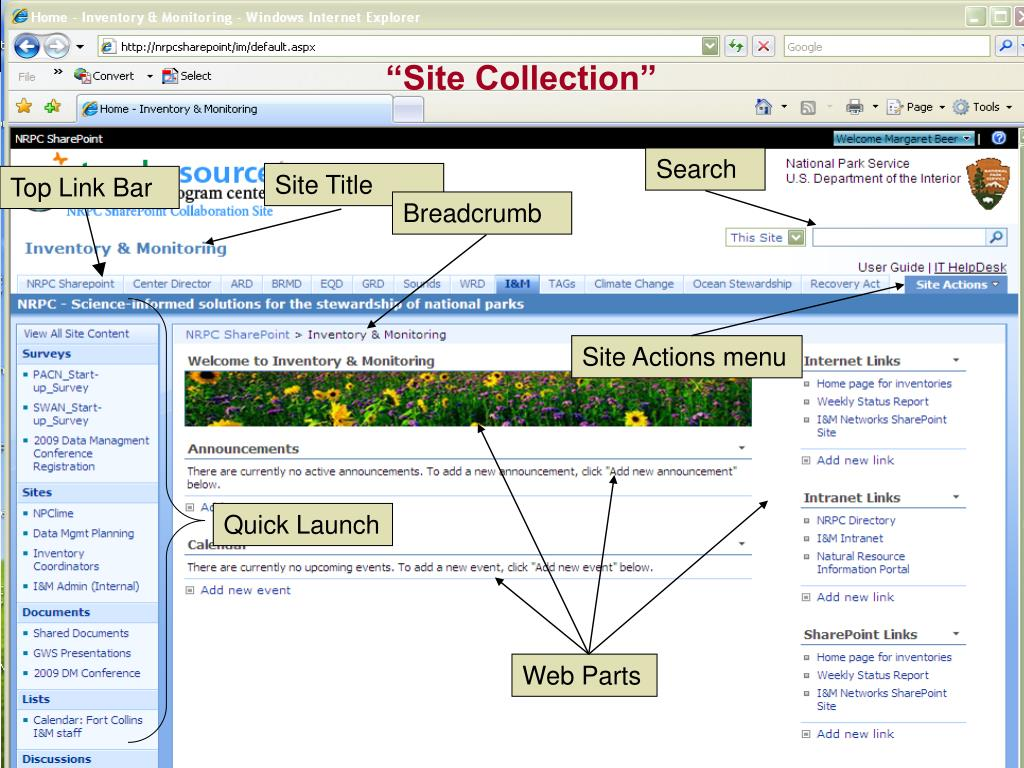 """Site Collection"""