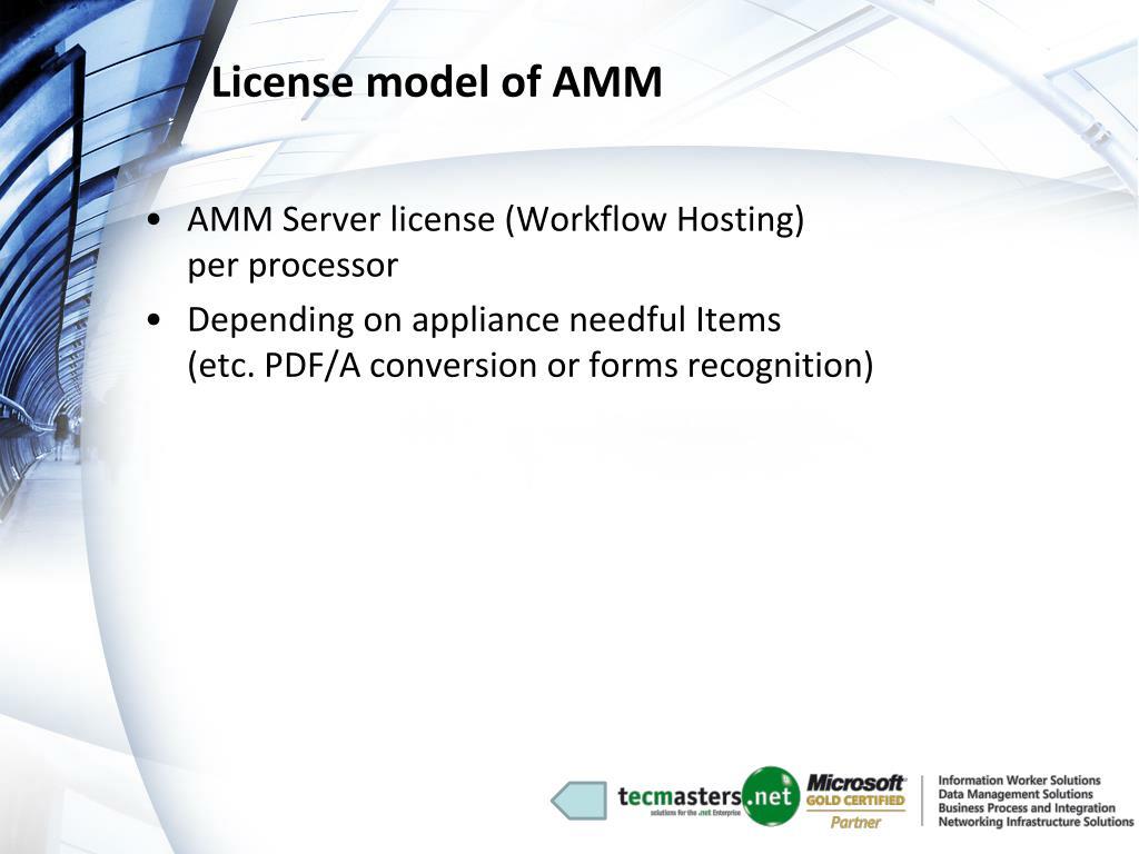 License model of AMM