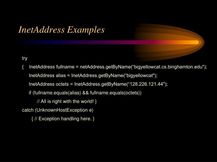 InetAddress Examples