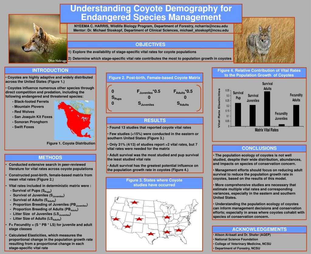Understanding Coyote Demography for Endangered Species Management