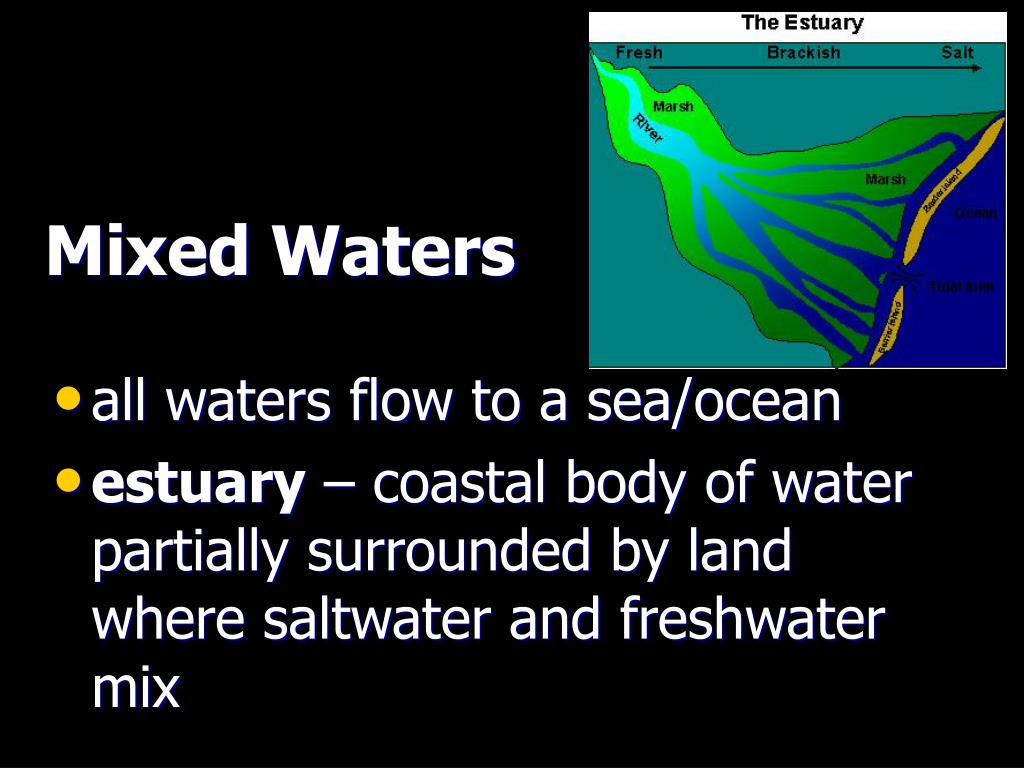 Mixed Waters