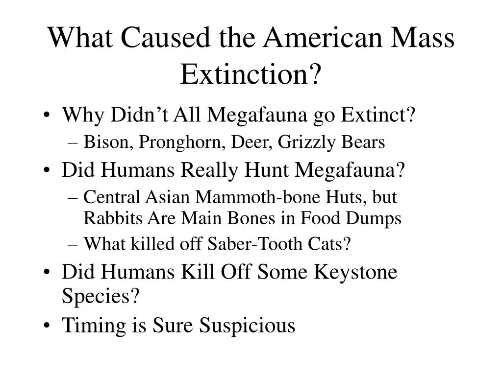 What Caused the American Mass Extinction?