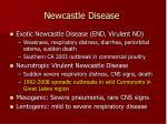 newcastle disease44