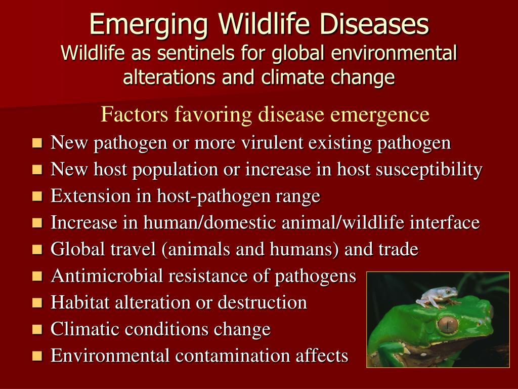Emerging Wildlife Diseases