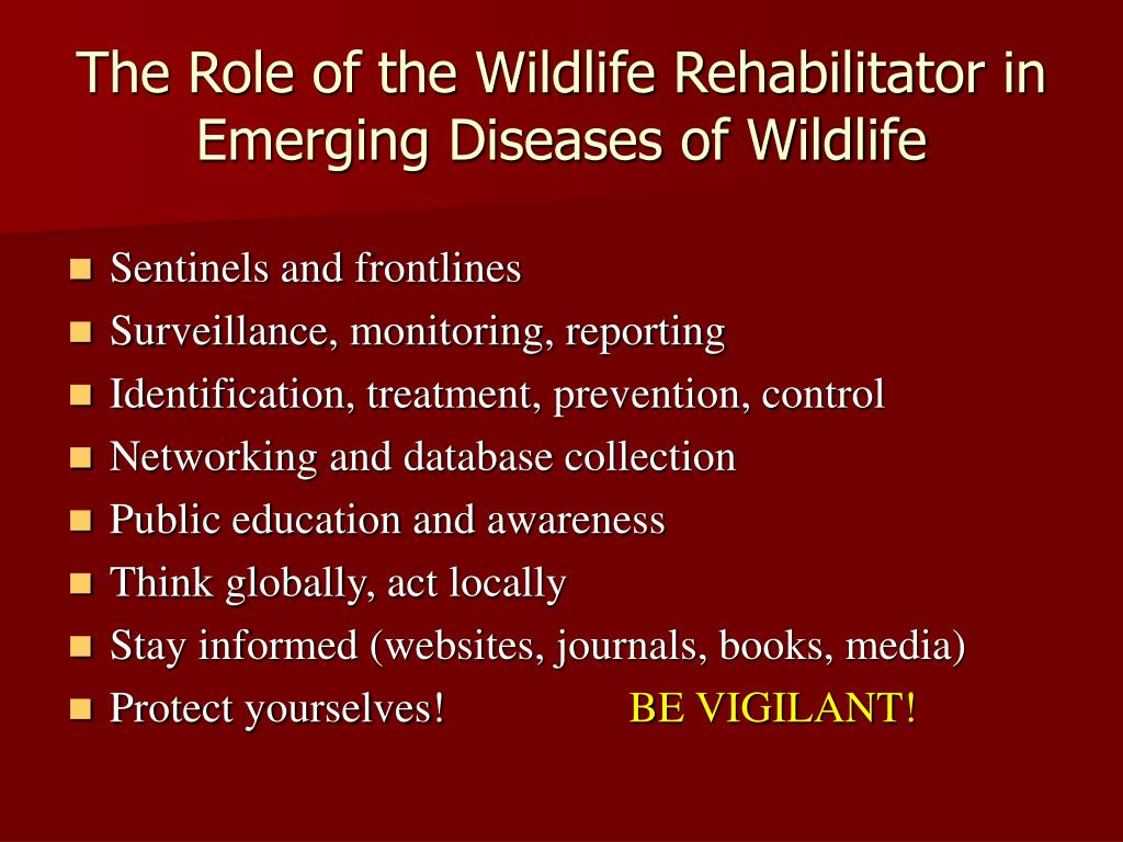 The Role of the Wildlife Rehabilitator in Emerging Diseases of Wildlife