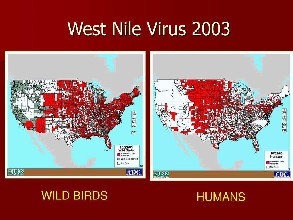 West Nile Virus 2003