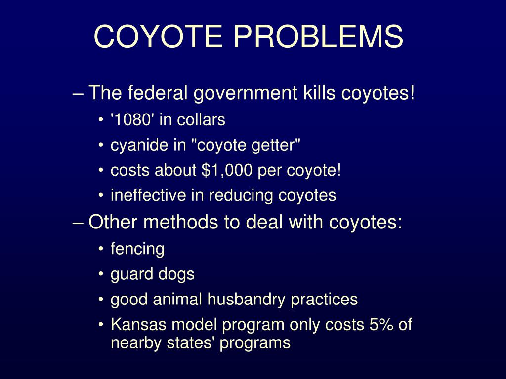 COYOTE PROBLEMS