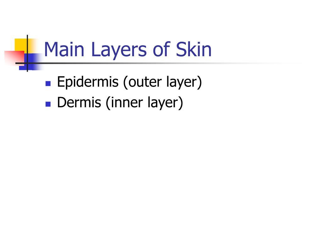 Main Layers of Skin