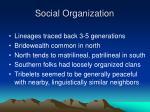 social organization16