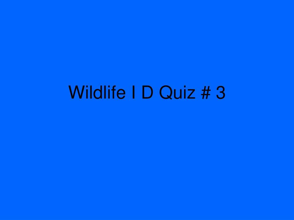 Wildlife I D Quiz # 3