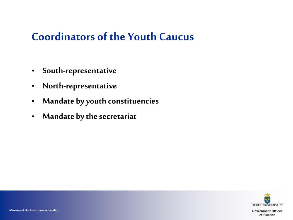 Coordinators of the Youth Caucus