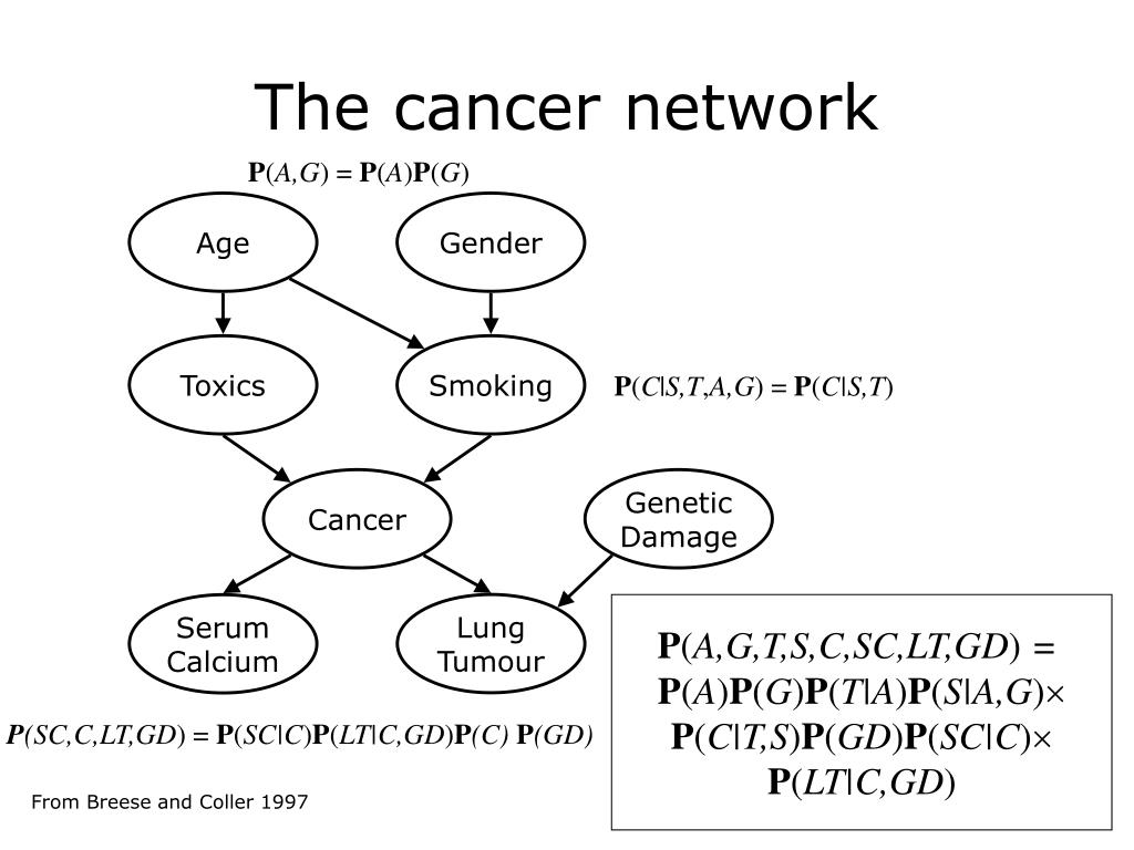 The cancer network