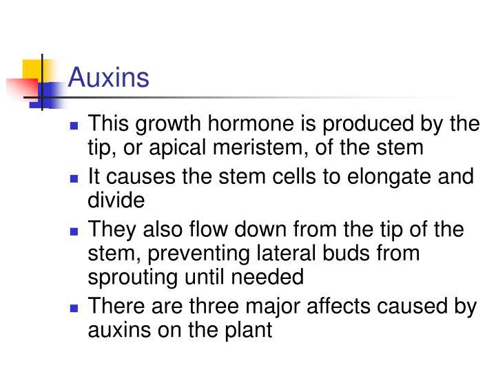Auxins