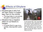 effects of ethylene