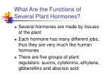 what are the functions of several plant hormones