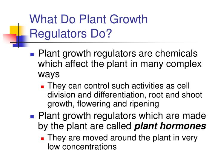 What Do Plant Growth Regulators Do?