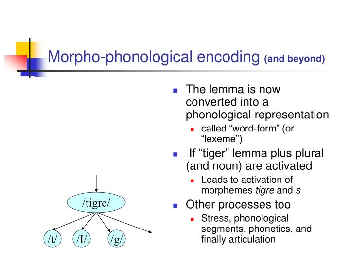 Morpho-phonological encoding