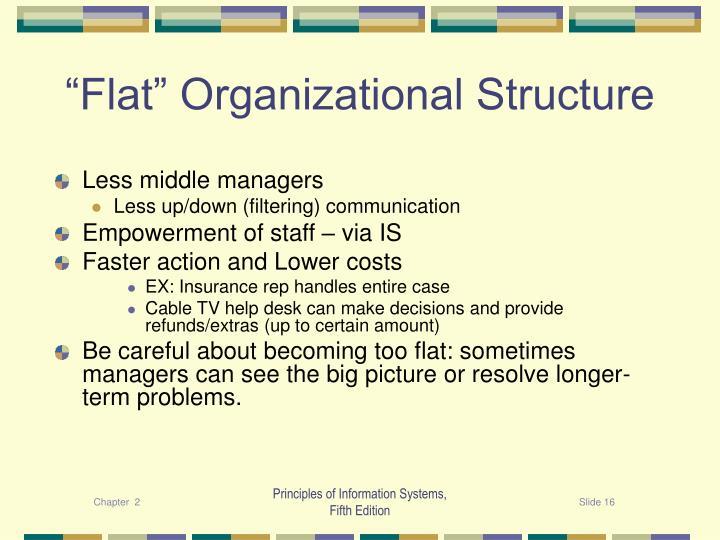 """Flat"" Organizational Structure"