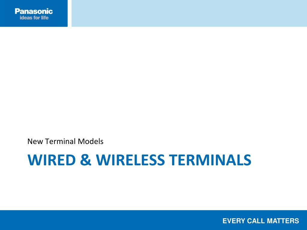New Terminal Models
