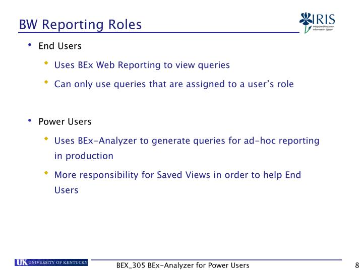 BW Reporting Roles