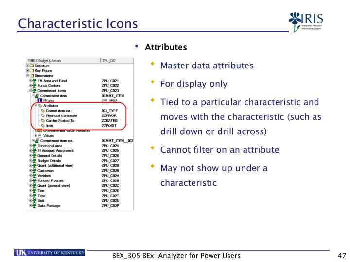 Characteristic Icons