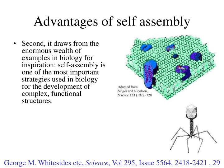 Advantages of self assembly