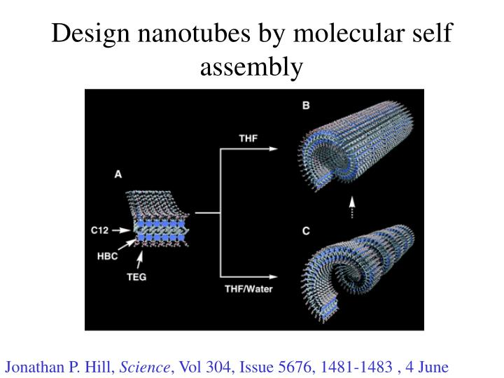 Design nanotubes by molecular self assembly