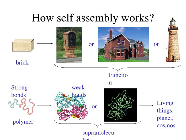 How self assembly works?